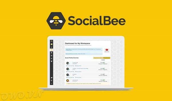 mua chung SocialBee